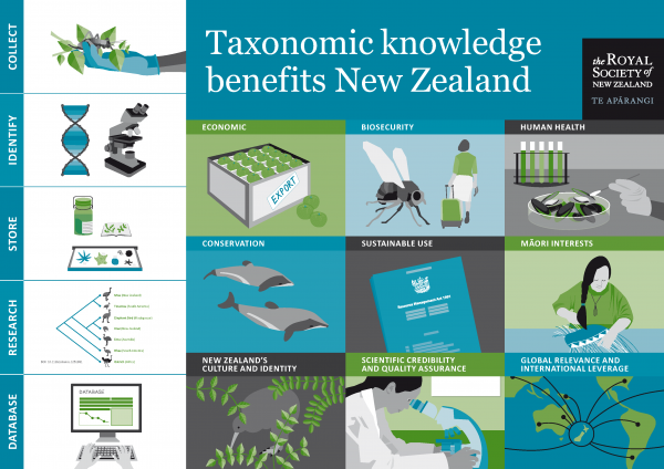 Infographic taxonomic knowledge benefits New Zealand web image
